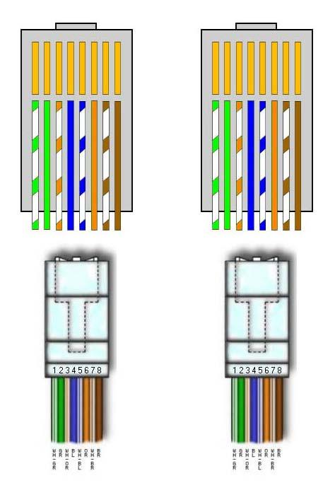 Cablaggio Cat 6 Schema : Guida al montaggio di un cavo rete rj ik dio